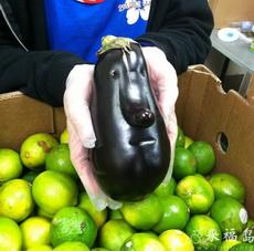 Handsome Eggplant