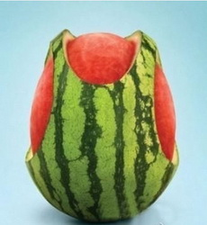 Watermelon suspender pant