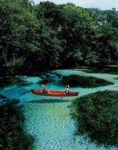 这水干净的有点令人发指啊