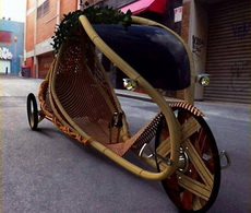 Growing Bamboo Bicycles