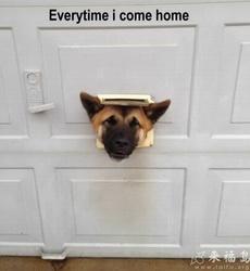 Everytime i come home