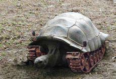 無敵坦克烏龜