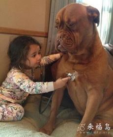 小萝莉想成为一名医生