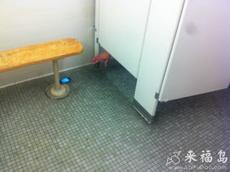 今天在衛生間外看到這么一幕