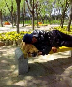 狗确实是人类最忠实的朋友