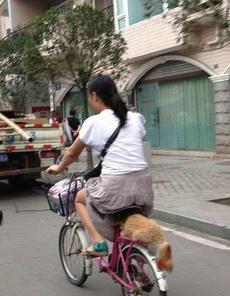 麻麻,我坐稳了,你骑快点