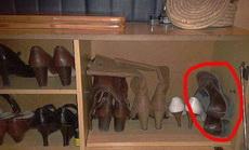這就是男人的鞋子的待遇!