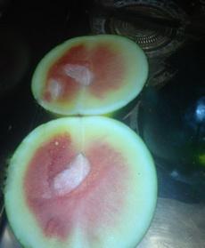 天氣熱買了個西瓜