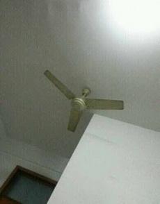 很好奇这个电扇怎么转?