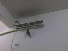 家里没冰箱,只能这样了!
