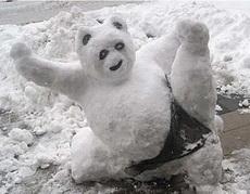 熊猫君,功夫再高也怕日(太阳)吧