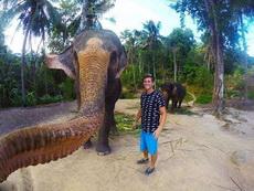 大象自带自拍杆