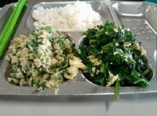 学校食堂给打的两个菜:鸡蛋炒韭菜和韭菜炒鸡蛋