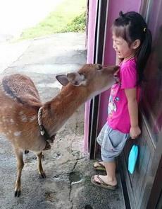 放开那个小女孩