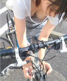 自行车,什么自行车