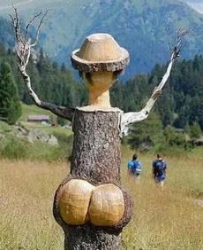 你身为一棵树,居然这么性感!!