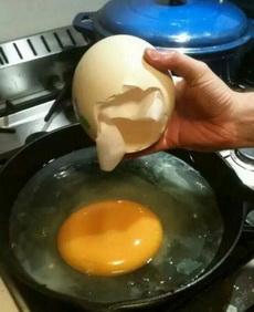 我一顿就吃一个蛋为什么我还是这么胖!