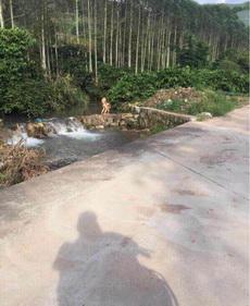 就喜欢农村的生活,山也青,水也绿!