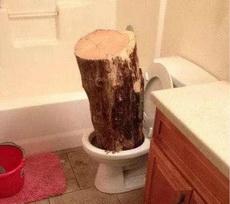 厕所真的塞了