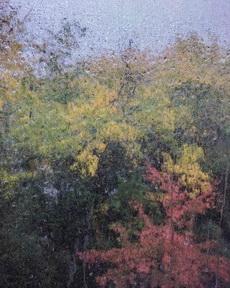 雨水与纱窗的结合,让外面看起来像水彩画