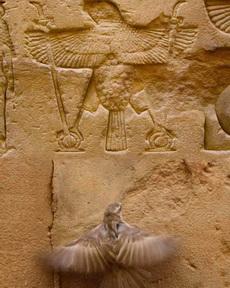 那个是几千年前的我