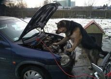 我请的修车师傅怎么样!