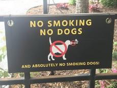 不抽煙就不準養狗