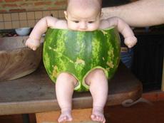 西瓜做的衣服