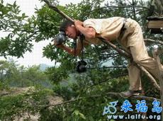 拍照最酷POSE——估计是拍野生动物呢