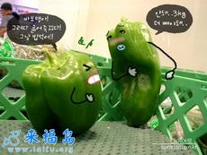 噢,你這拳打得我真痛-韓國生活創意超可愛小圖
