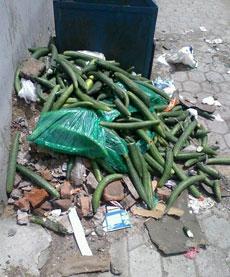 据说是某女生宿舍楼下的垃圾箱…………