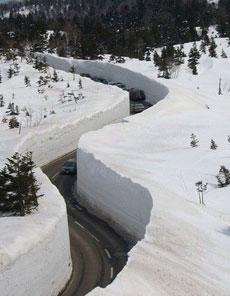 这雪也太厚了啊
