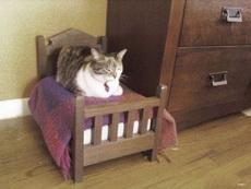 这小床太有爱了