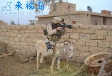 美国大兵在伊拉克