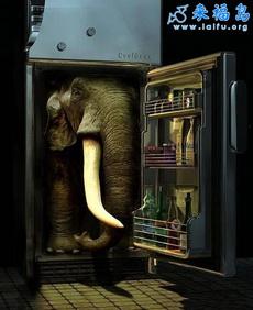 把大象装进冰箱里