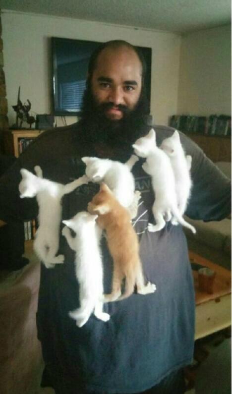 没错,我就是传说中的猫王