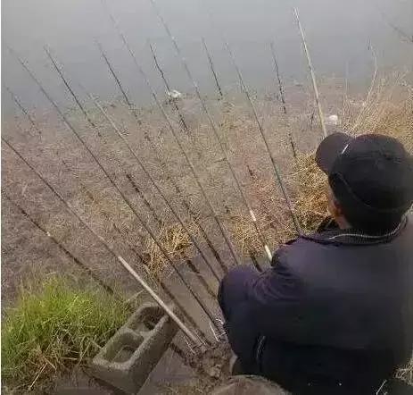 大爷,你给鱼留点活路吧
