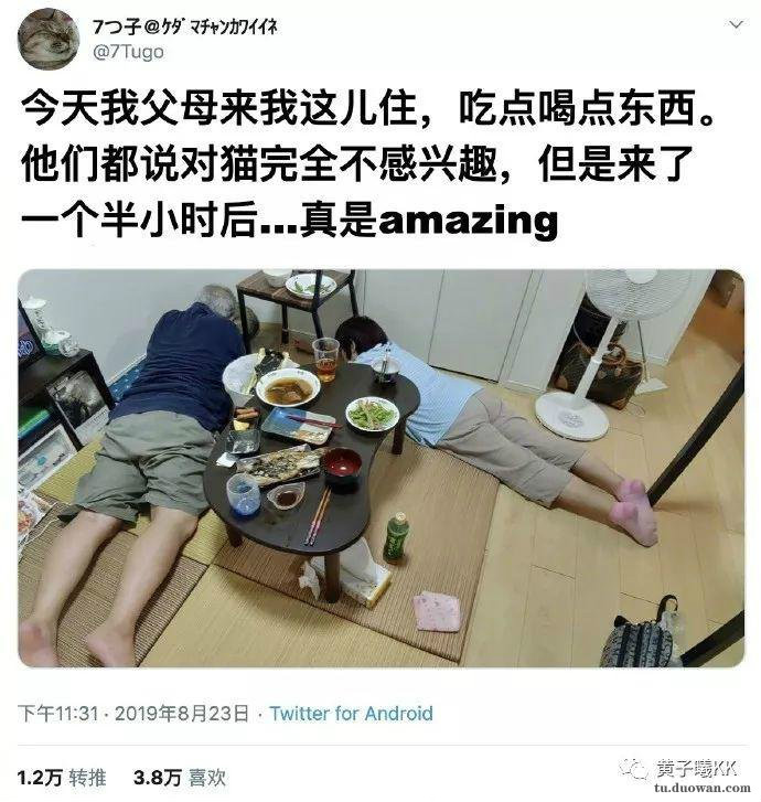 上海一女子家中囤约9吨医用酒精欲牟利 被批捕