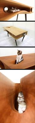 猫咪快乐桌